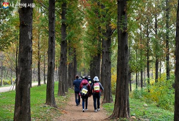 2019 서울트레킹이 4월부터 10월까지 서울의 명소 5곳에서 진행된다. 사진은 하늘공원