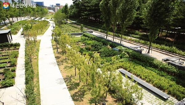 '경춘선 숲길' 총 6km 전 구간이 7년 만에 완전히 연결됐다.